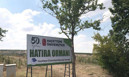 50. Yıl Hatıra Ormanı
