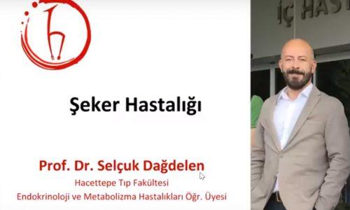 HİK – Sağlık Platformu Webinarlar Serisi 3. Webinar: Şeker Hastalığı
