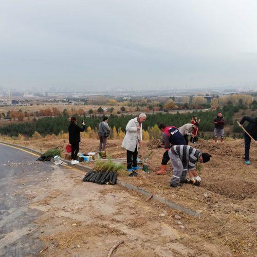 HÜ Ormanı HÜMED Fidan Dikme Etkinliği 2019 Yapıldı